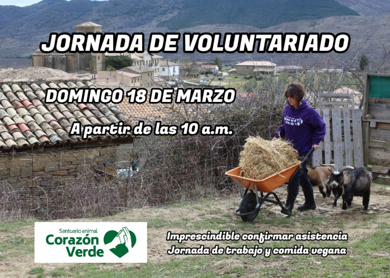 Jornada de voluntariado