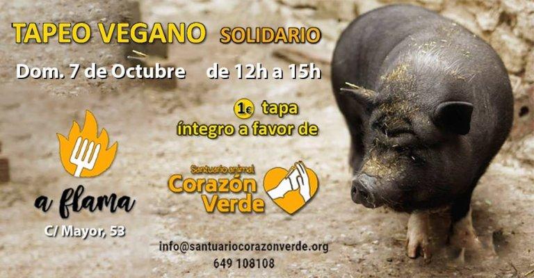 Tapeo vegano en Zaragoza