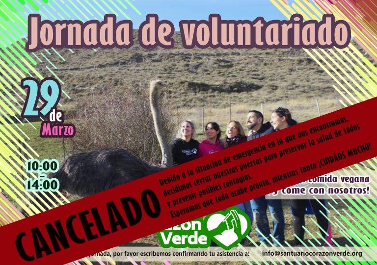 Voluntariado de Marzo