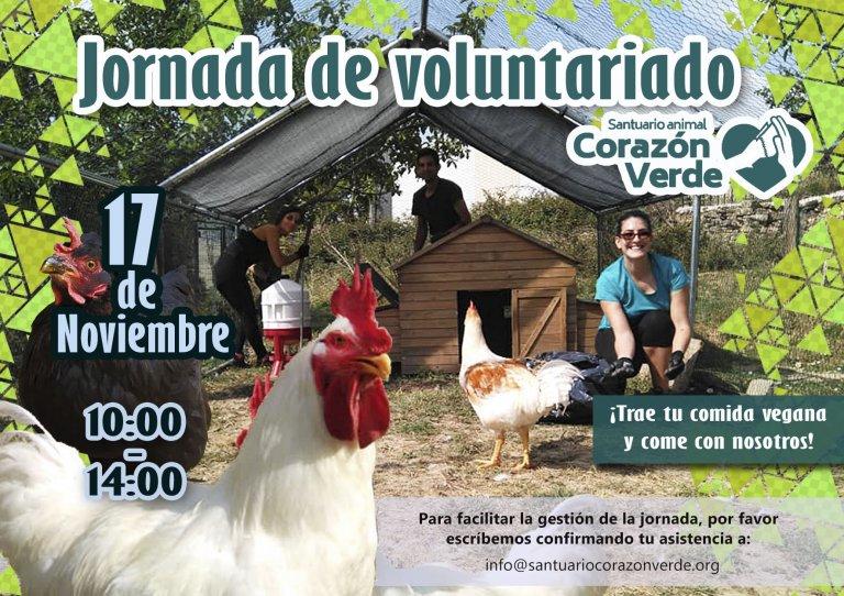 Voluntariado de Noviembre