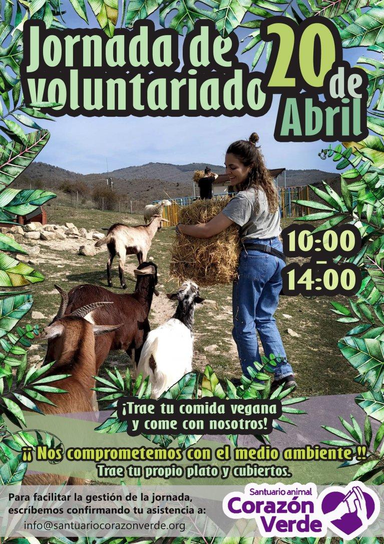 Voluntariado en Semana Santa