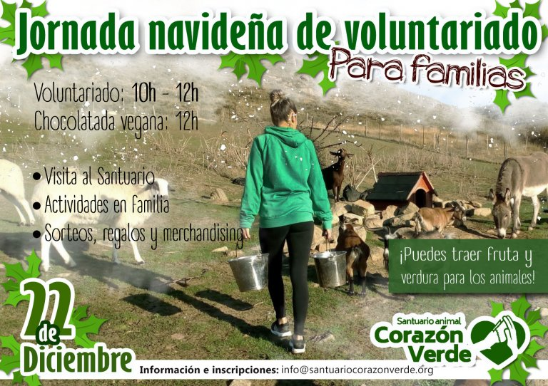 VOLUNTARIADO NAVIDEÑO